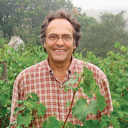 christopher strong - bicycle gourmet's organic wine